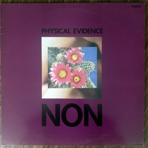 NON Physical Evidence (Mute - UK original) (VG+) LP