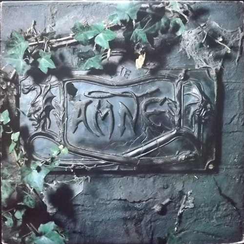DAMNED, the The Black Album (Chiswick - Europe original) (VG/VG+) 2LP