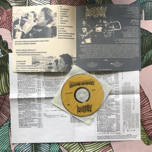 CARCASS GRINDER/DEMISOR Split (Mink - Japan original) (NM) CD