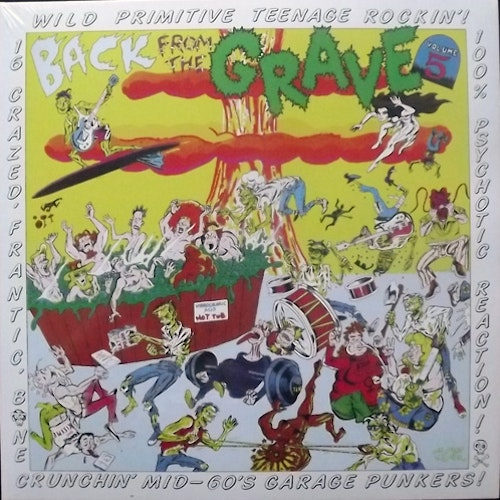 VARIOUS Back From The Grave Volume 5 (Crypt - Germany reissue) (NEW) LP