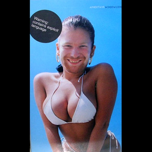 APHEX TWIN Windowlicker (Warp - UK original) (EX) VHS