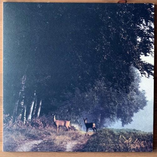 ARV & MILJÖ Svensk sommar i stilla frid (Omlott - Sweden original) (NEW) LP