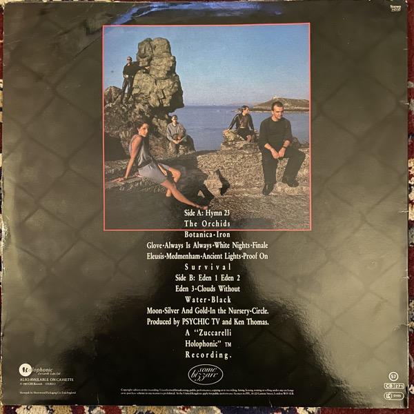 PSYCHIC TV Dreams Less Sweet (Some Bizarre - UK original) (VG+/EX) LP