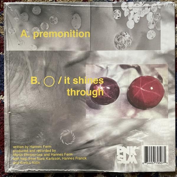"""HOLY Premonition (PNKSLM - Sweden original) (NM/EX) 7"""""""