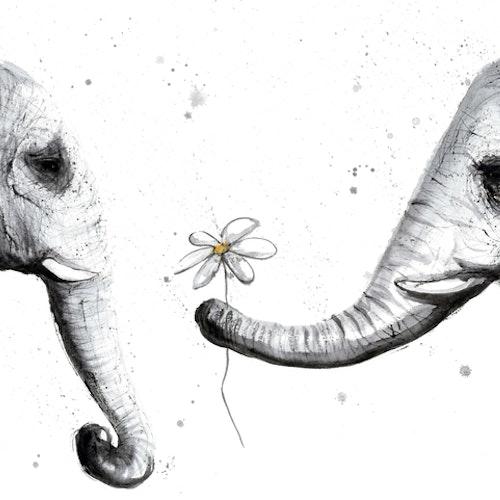 Elephantlove