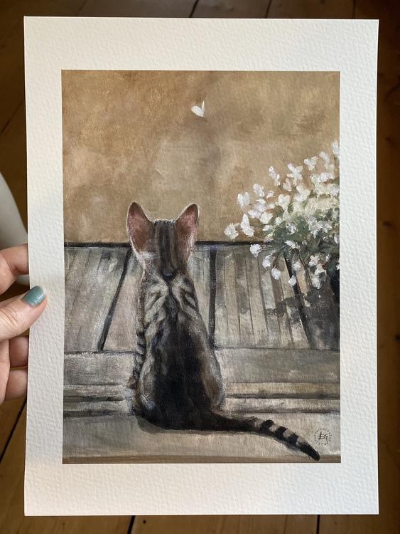 Katt på balkong a4