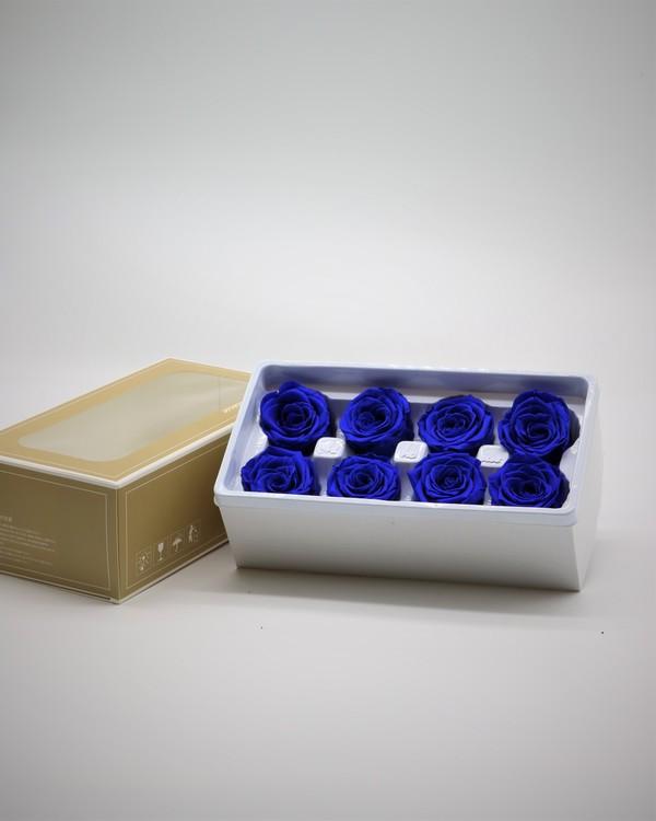 Evighetsros - Mörkblå - M - 8 st.