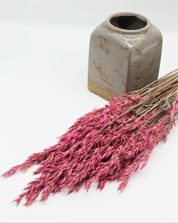Havre 100 gr. - rosa