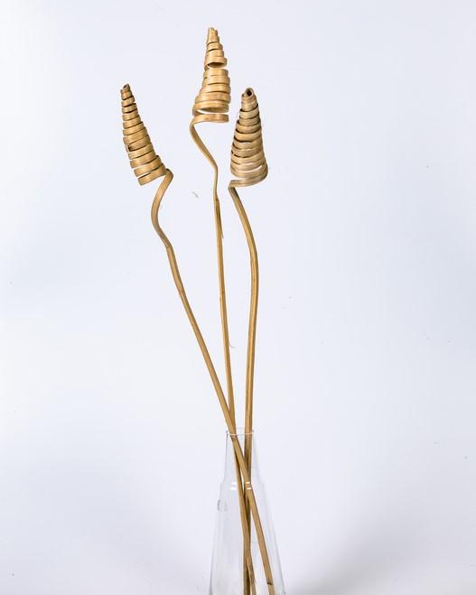 Cane Cone - 5 st. Naturell