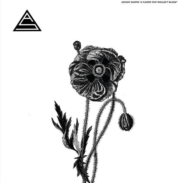 Ancient Shapes ‎– A Flower That Wouldn't Bloom Lp