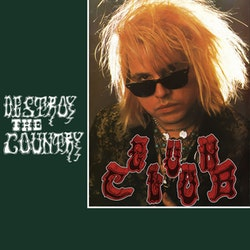 Gun Club, The ‎– Destroy The Country Lp
