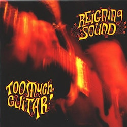 Reigning Sound ‎– Too Much Guitar Lp