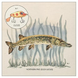 Nick Lowe  ‎– Nothern pike 12''
