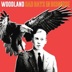 Woodland  ‎– Bad Days In Disguise Lp