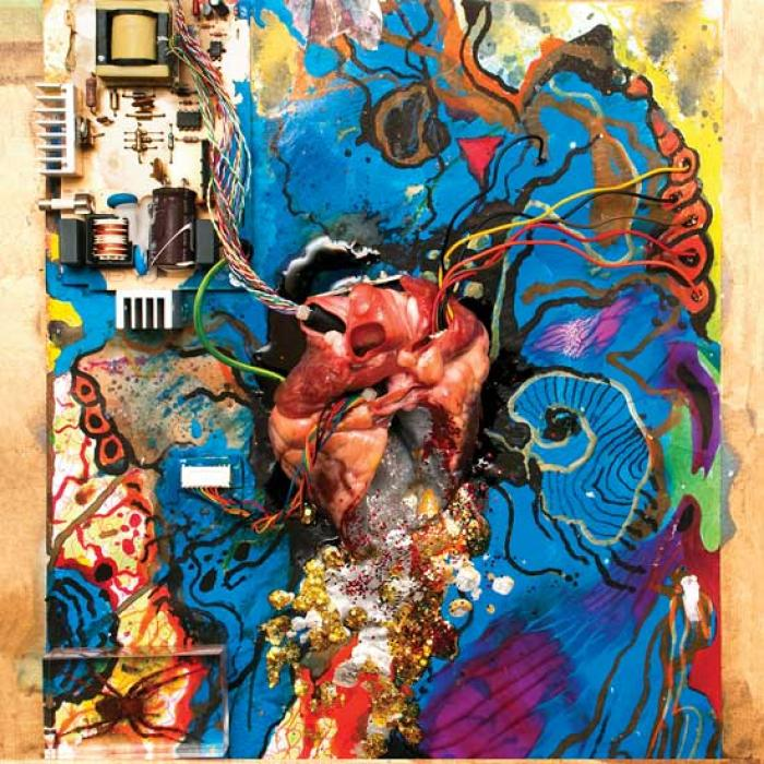Timmy's Organism  – Heartless Heathen Lp