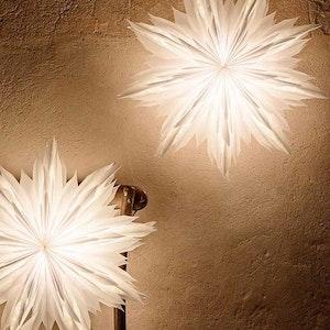 Julstjärna Oslo 60 vit