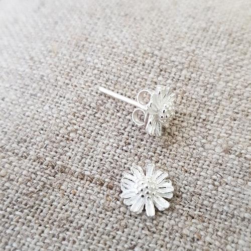 Daisy silverörhängen
