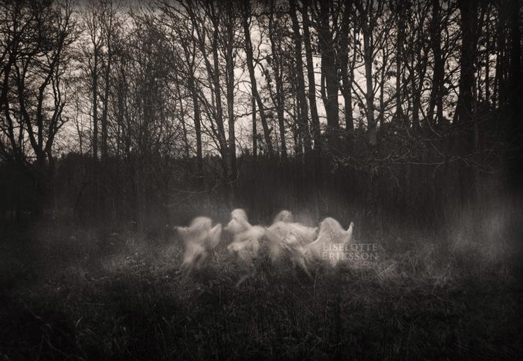 A4 'Faerie Dance Sepia' Print