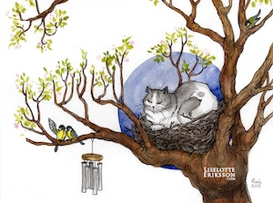 'Cat's Nest' Print / Card