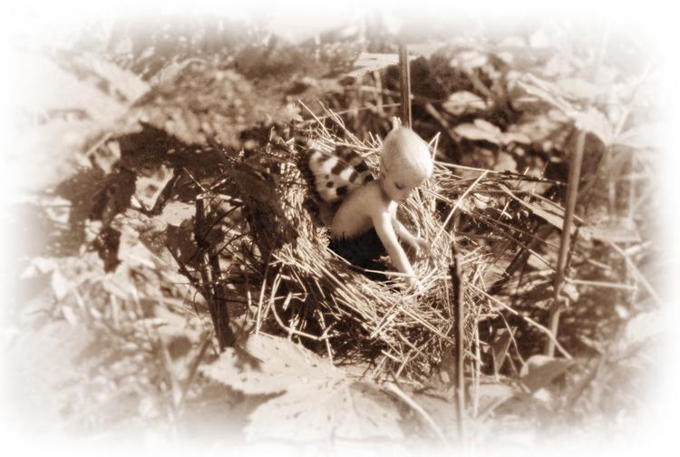 'Pixie Nest' Print