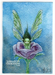 'In A Rose' Original Miniature Painting ACEO