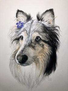 "Limited offer: 8x10"" Custom Pet Portrait"