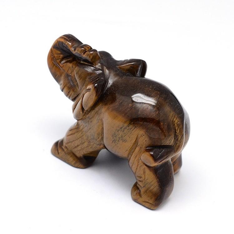 Elefant Tigeröga, I LAGER OKTOBER