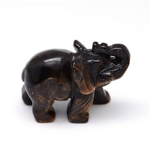 Elefant Tigeröga