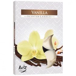 Värmeljus med doft 6-pack, Vanilj