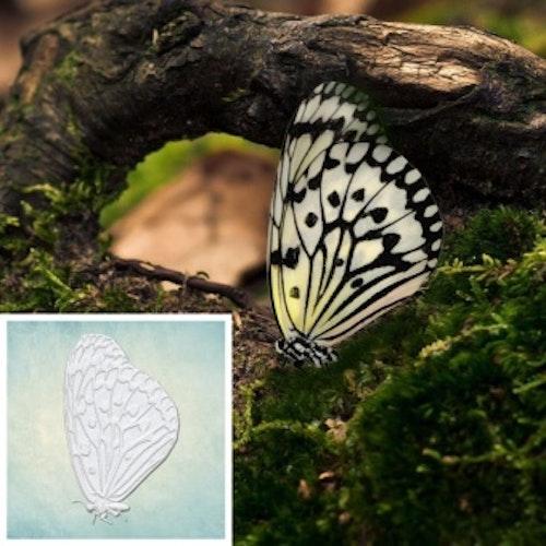 ProSvet Silikonform, Butterfly 4, S md1207