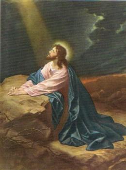 SB 017 Jesus, Större