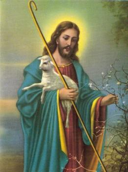 SB 018 Jesus, Större