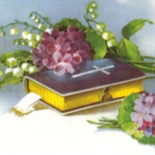 SB 027 Bibel, komfirmation dop