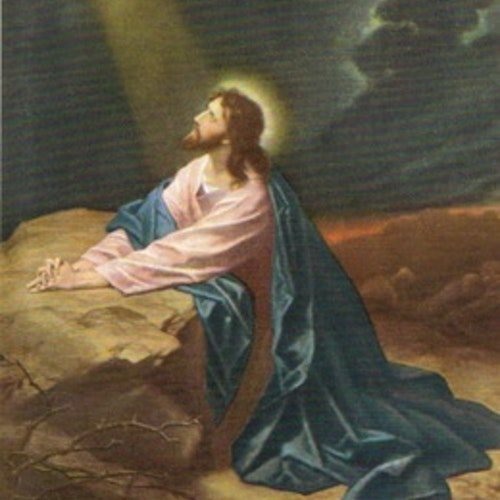 SB 031 Jesus, Mellanstor