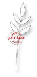 Gummiapan Dies, Kvist D170341