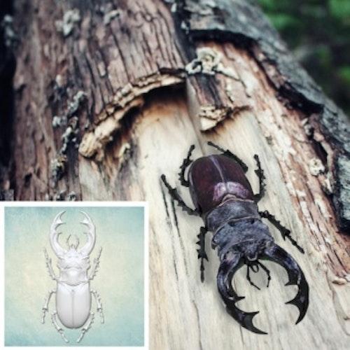 ProSvet Silikonform, Insekt xs md1174