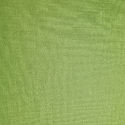 """American crafts cardstock 12""""x12"""" - Spinach 71051"""