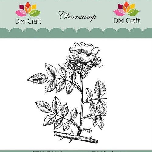 "Dixi craft clearstamp - ""Botanical Collection"" STAMP0145"