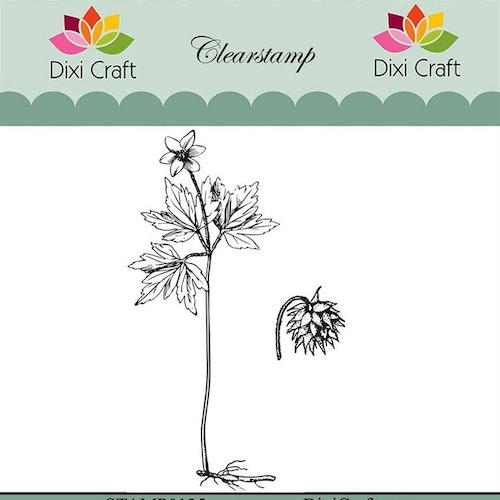 "Dixi craft clearstamp - ""Botanical Collection"" STAMP0135"