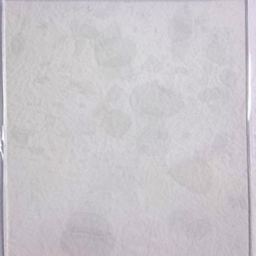 Nellie snellen Mixed Media Transparent Plate A5 NMMP001