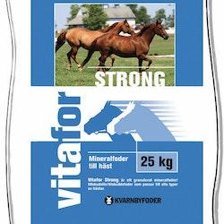 Vitafor Strong