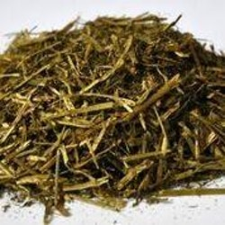 Dengie Alfa-A Oil 15kg