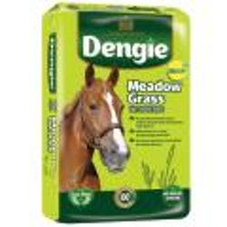 Dengie Medow Grass