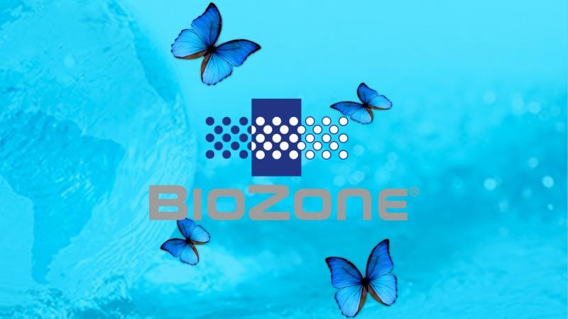 BioZone - En luftrenare utöver det vanliga?