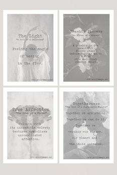 Cards - Softly Black & White