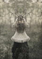 The Horned Goddess