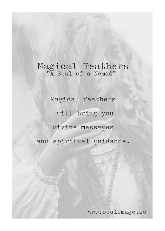 Magical Feathers