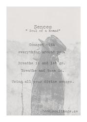 Sences