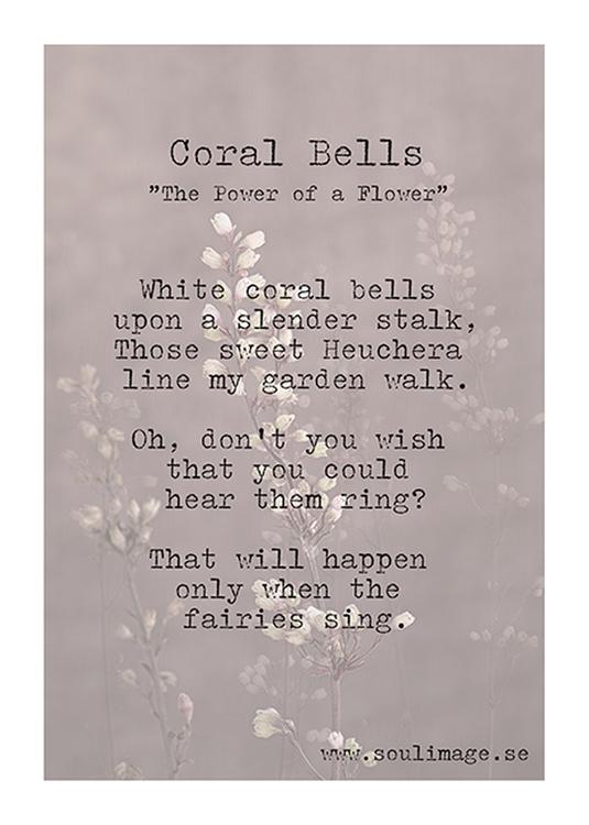 Coral Bells