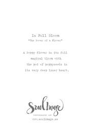 In Full Bloom - Card